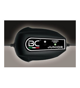 BATTERY CONTROLLER JUNIOR 900 FORELETTRONICA